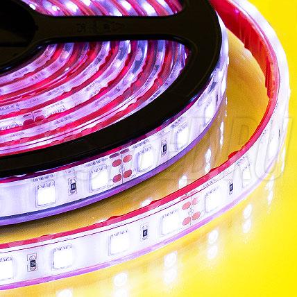 Герметичная светодиодная лента IAMLED STEREO 60 (NANO / IP66 / IP67 / IP68 / IP68C)