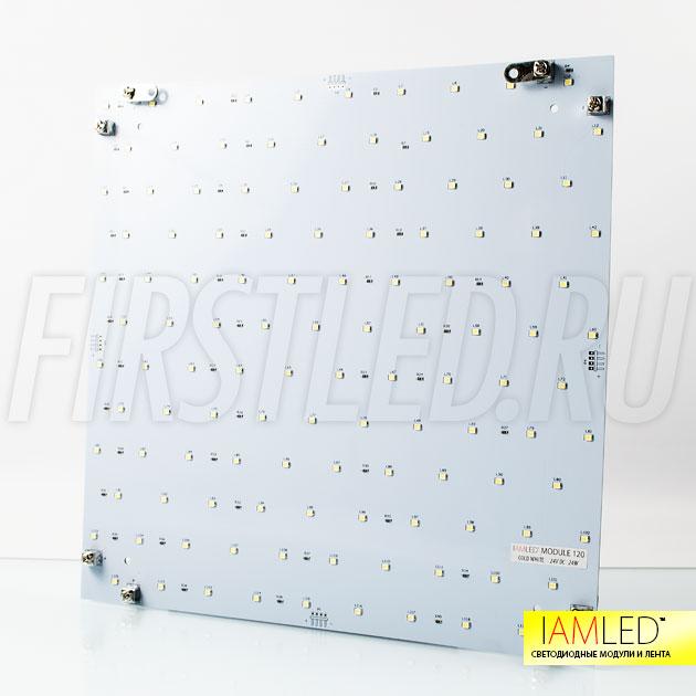 Светодиодный модуль для подсветки натяжных потолков IAMLED MODULE 120