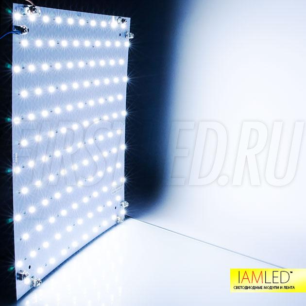 Холодный белый оттенок светодиодного модуля IAMLED MODULE 120