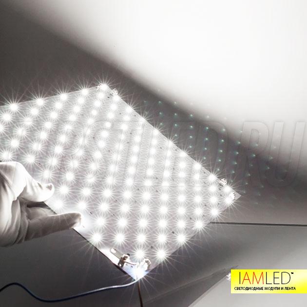 IAMLED MODULE 120 — светодиодный модуль дневного белого света