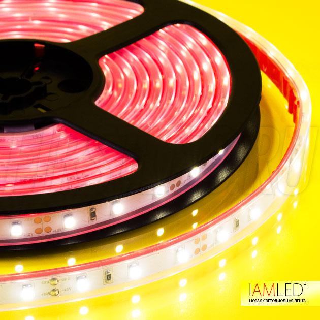 Герметичная светодиодная лента IAMLED MONO 60 со степенью защиты IP67