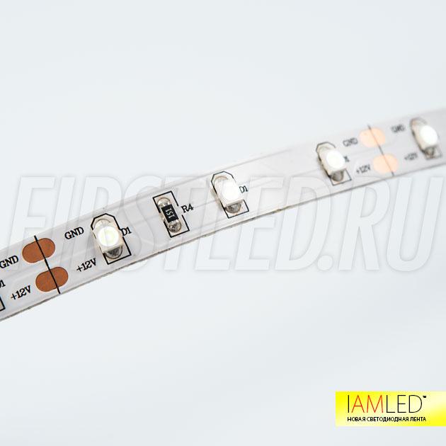 IAMLED MONO 60 — недорогая светодиодная лента средней яркости выполнена из светодиодов типа SMD 3528, 60 светодиодов на 1 метр