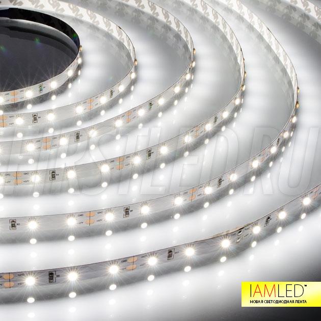 Одноцветная светодиодная лента IAMLED MONO 60 — холодный белый оттенок