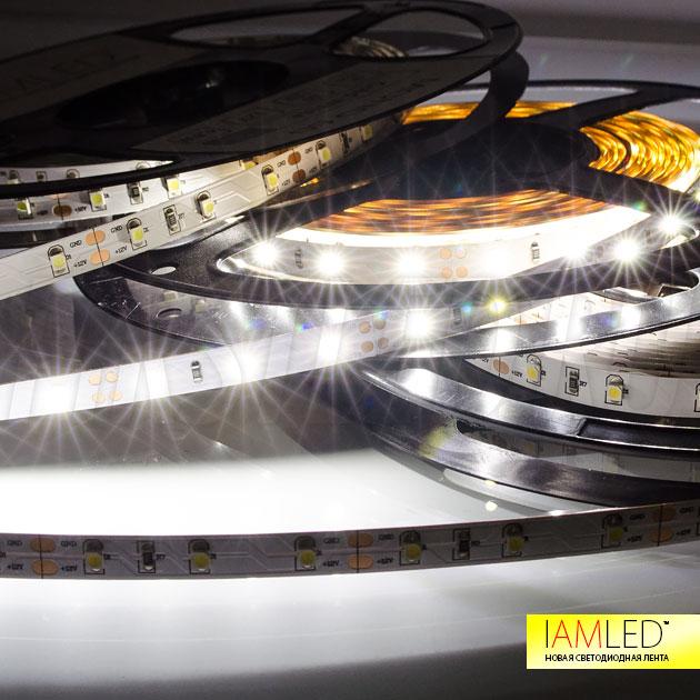 Дневной белый оттенок светодиодной ленты IAMLED MONO 60