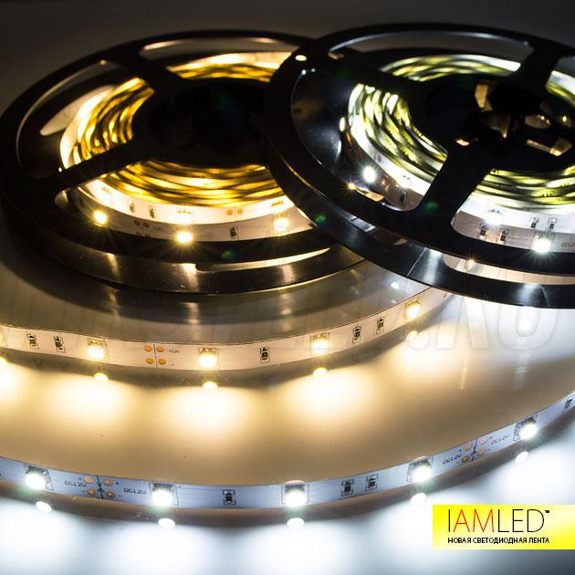 Одноцветная светодиодная лента IAMLED STEREO 30: холодный и теплый белый оттенки