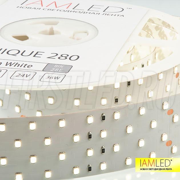 Светодиодная лента IAMLED UNIQUE 280 поставляется упаковкой по 2,5 метра