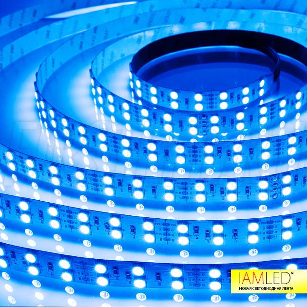 Многоцветная светодиодная лента IAMLED RGB 120 — синий оттенок