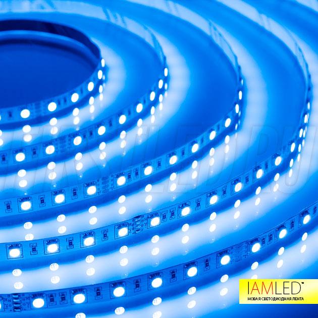 Синий цвет светодиодной ленты IAMLED RGB 60