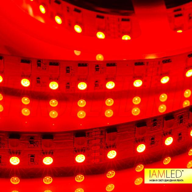 Двухрядная светодиодная лента IAMLED RGB WHITE 144 (RGBW): один ряд белых W светодиодов и второй ряд многоцветных RGB
