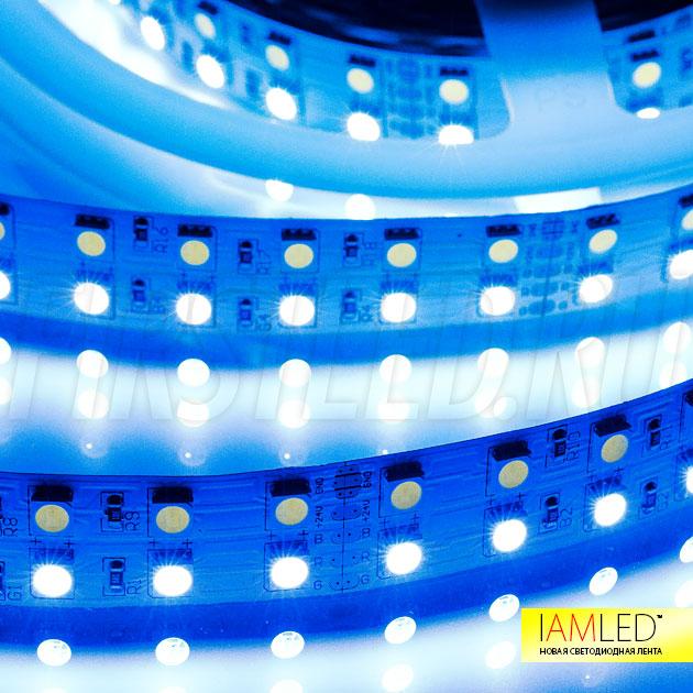 Двухрядная светодиодная лента IAMLED RGB WHITE 144 (RGBW) — RGB ряд, синий цвет