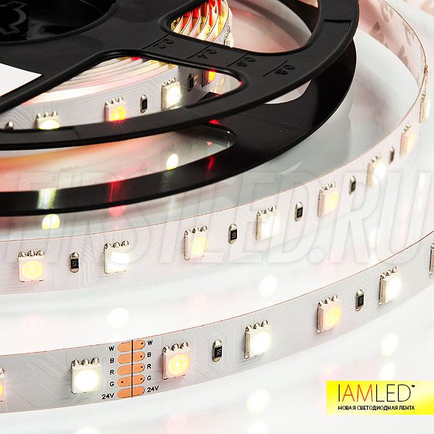 Теплый белый с добавлением красного оттенка — все это одна светодиодная лента IAMLED RGB WHITE 60