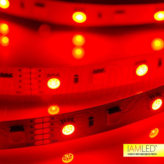Мультицветная светодиодная лента IAMLED RGB WHITE 60 — Красный цвет