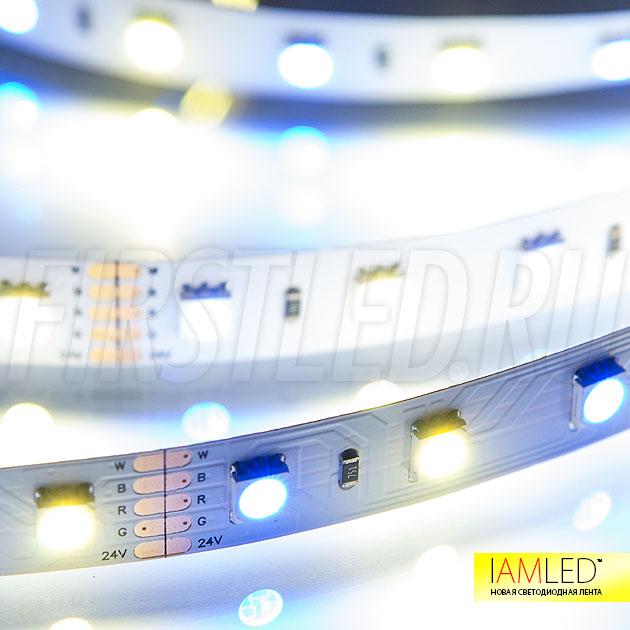 Мультицветная светодиодная лента IAMLED RGB WHITE 60 (RGB + теплый белый (2700-2900К))