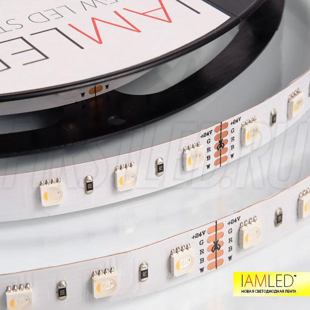 Уникальная мультицветная светодиодная лента IAMLED RGB WHITE ONE 60 (RGB+Белый)