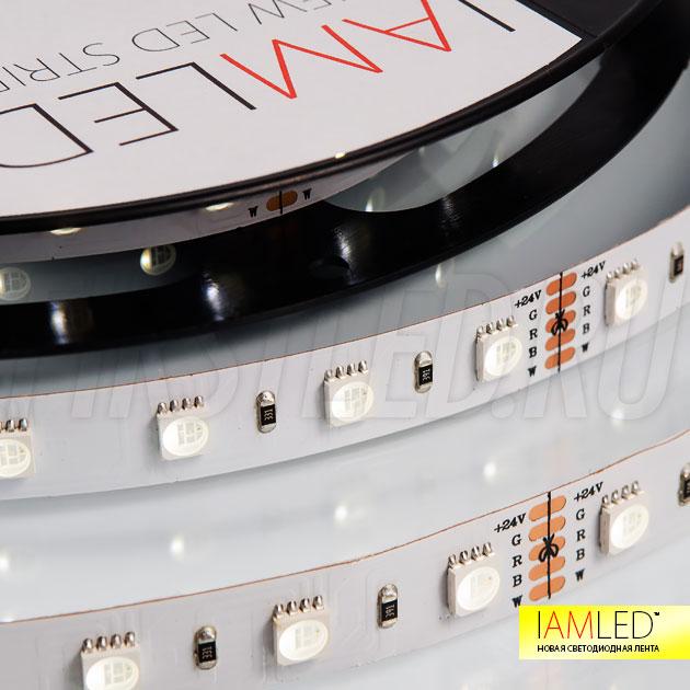 Теплый белый оттенок в каждом RGBW светодиоде ленты IAMLED RGB WHITE ONE 60