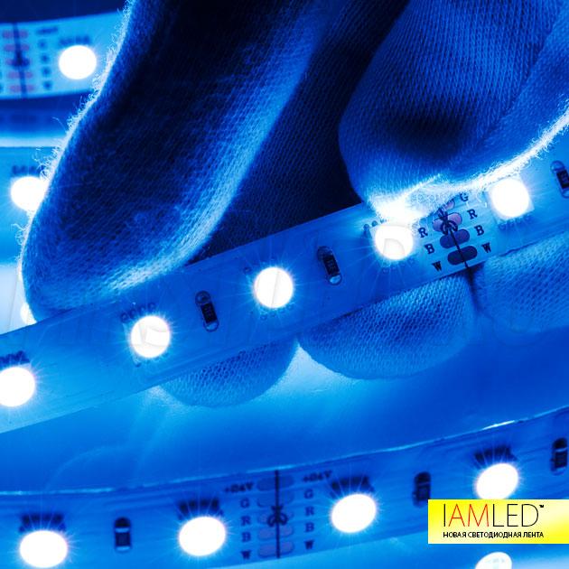 Синий цвет (синий кристалл из четырех в одном светодиоде) светодиодной ленты IAMLED RGB WHITE ONE 60