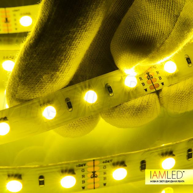 С помощью систем управления DiKolor можно выбирать любой цвет и добавлять белый свет