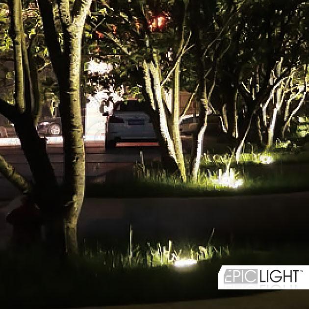 Освещение деревьев с помощью ярких led светильников MONUMENTO Lux
