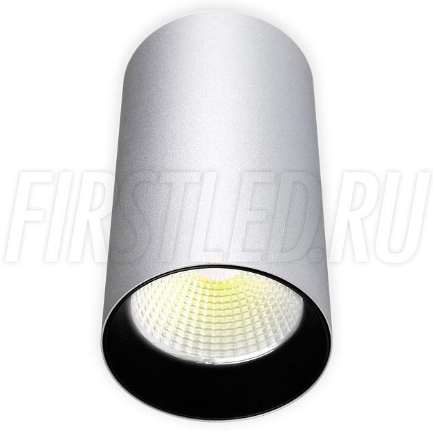 Накладной светодиодный светильник POLONIUM Silver 15W (черная вставка)