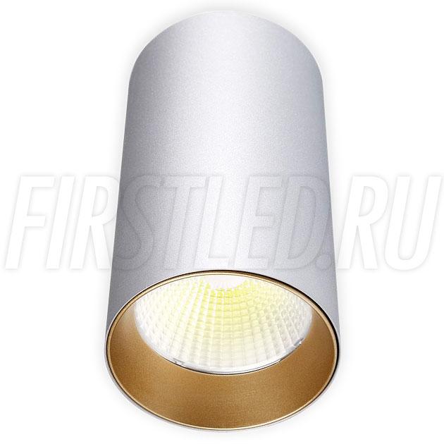 Накладной светодиодный светильник POLONIUM Silver 15W (золотая вставка)