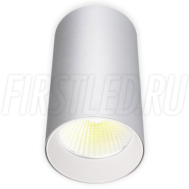 Накладной светодиодный светильник POLONIUM Silver 15W (белая вставка)