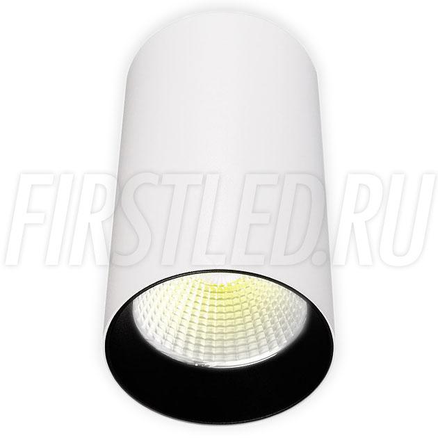 Накладной светодиодный светильник POLONIUM White 15W (черная вставка)