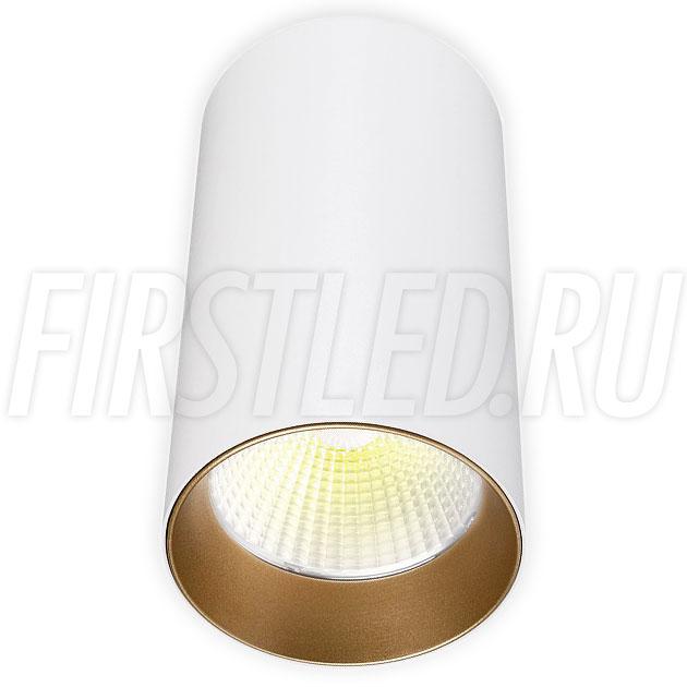 Накладной светодиодный светильник POLONIUM White 15W (золотая вставка)