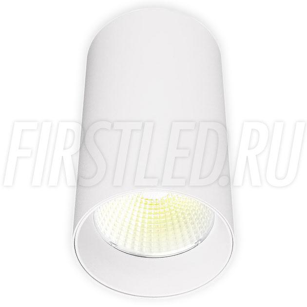 Накладной светодиодный светильник POLONIUM White 15W (белая вставка)