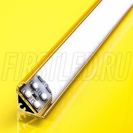 Алюминиевый профиль для витрин TALUM S20.17g (золото)